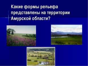 Какие формы рельефа представлены на территории Амурской области?