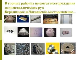 В горных районах имеются месторождения полиметаллических руд Березитовое и Ча