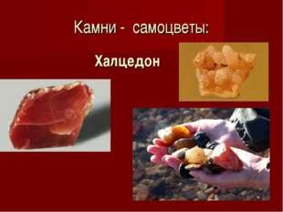 Камни - самоцветы: Халцедон