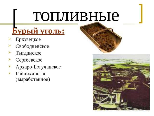 топливные Бурый уголь: Ерковецкое Свободненское Тыгдинское Сергеевское Архаро...