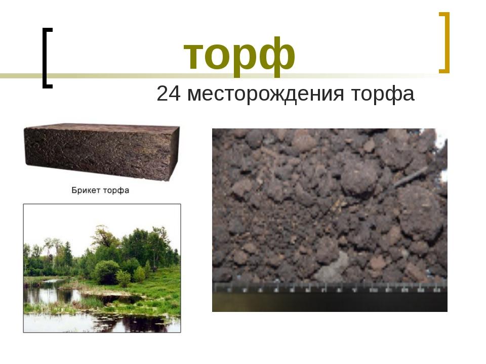 торф 24 месторождения торфа