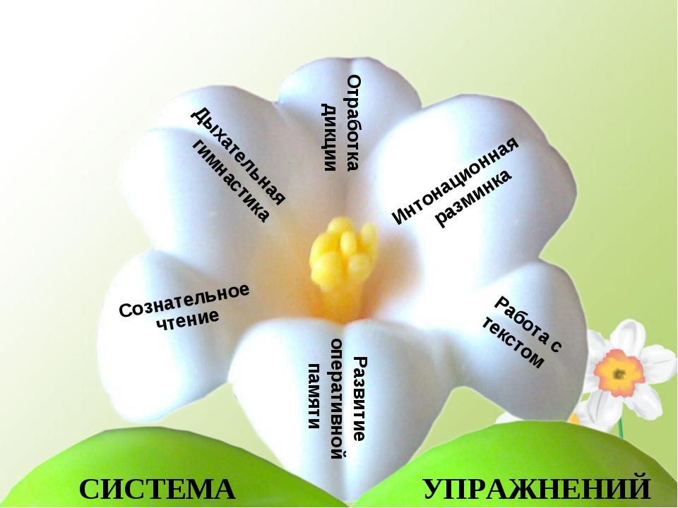 СИСТЕМА Дыхательная гимнастика Сознательное чтение Отработка дикции Работа с...