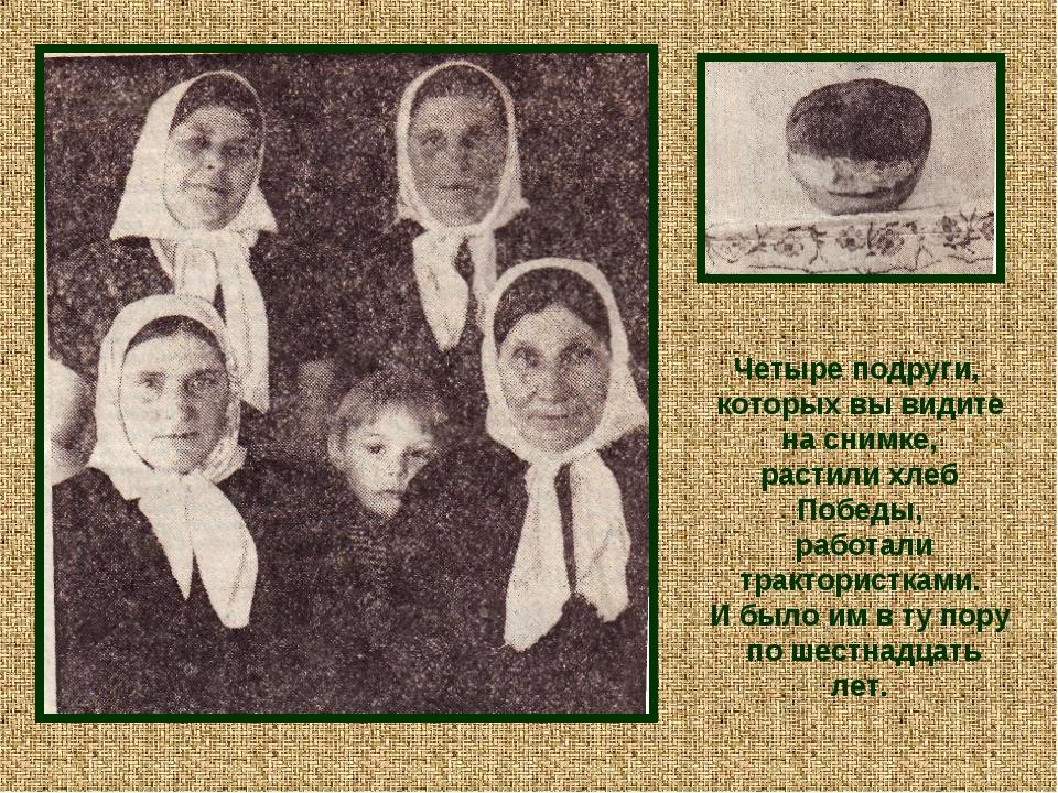 Четыре подруги, которых вы видите на снимке, растили хлеб Победы, работали т...