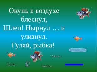 Окунь в воздухе блеснул, Шлеп! Нырнул … и улизнул. Гуляй, рыбка!