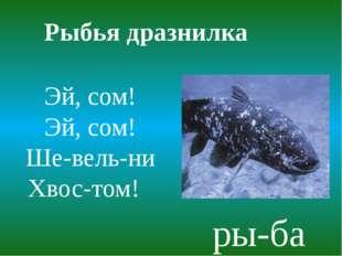 Рыбья дразнилка Эй, сом! Эй, сом! Ше-вель-ни Хвос-том! ры-ба