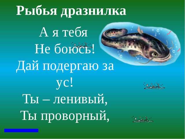 Рыбья дразнилка А я тебя Не боюсь! Дай подергаю за ус! Ты – ленивый, Ты пров...