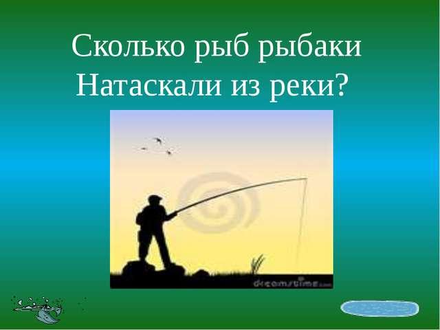 Сколько рыб рыбаки Натаскали из реки?