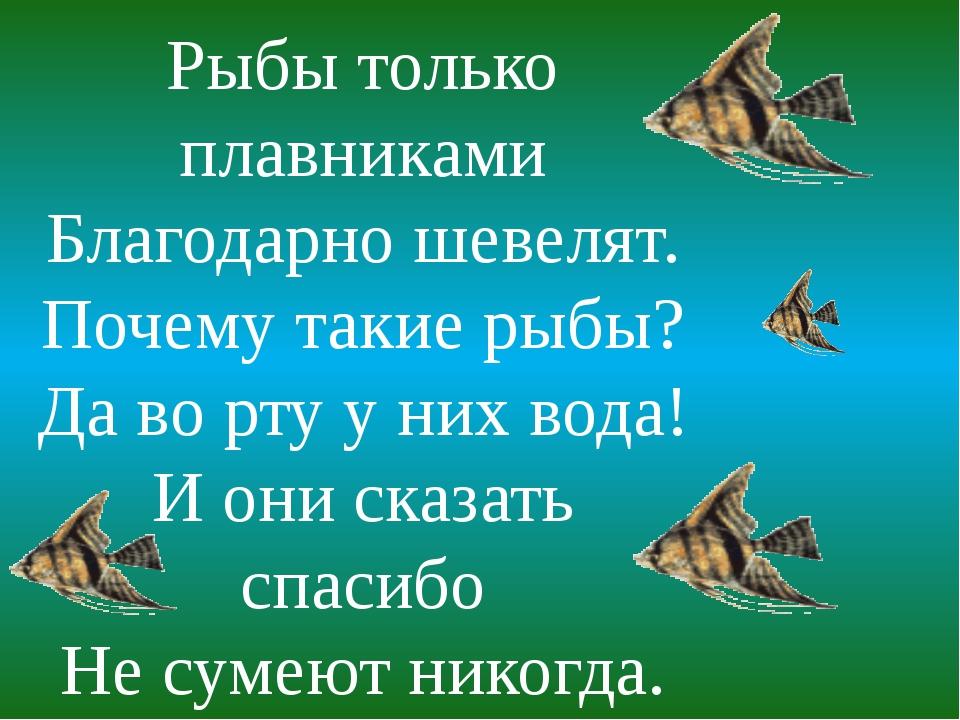 Рыбы только плавниками Благодарно шевелят. Почему такие рыбы? Да во рту у них...