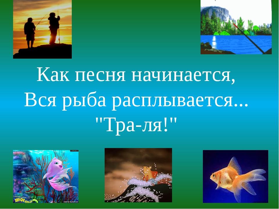 """Как песня начинается, Вся рыба расплывается... """"Тра-ля!"""""""