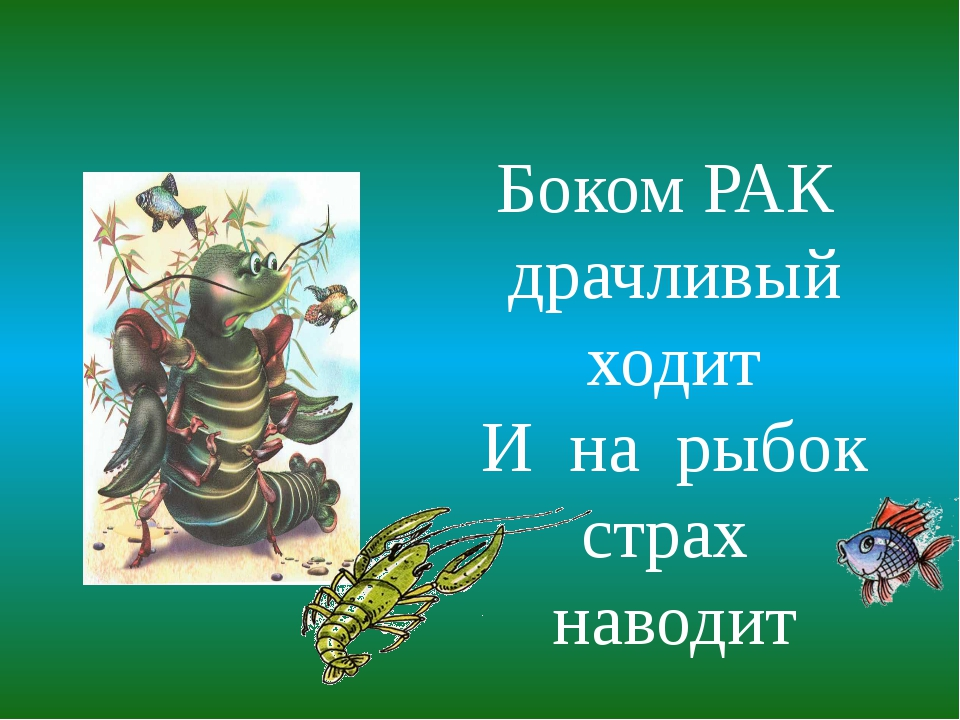 Боком РАК драчливый ходит И на рыбок страх наводит