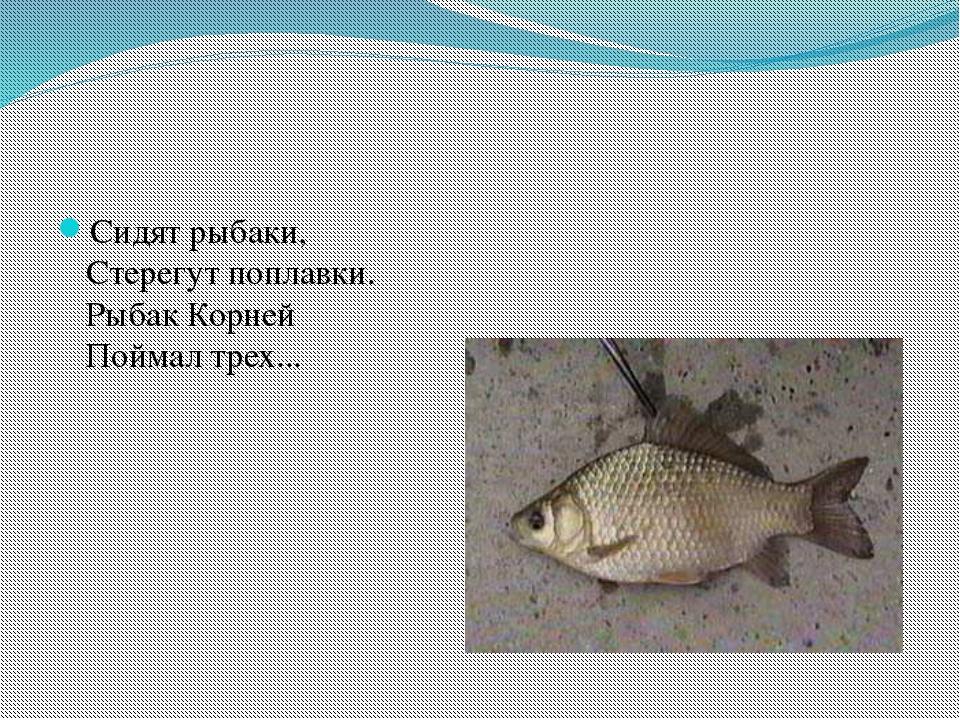 Сидят рыбаки, Стерегут поплавки. Рыбак Корней Поймал трех...