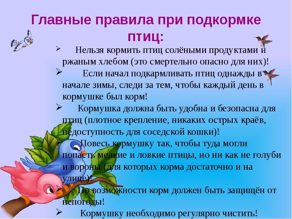 Главные правила при подкормке птиц: Нельзя кормить птиц солёными продук...