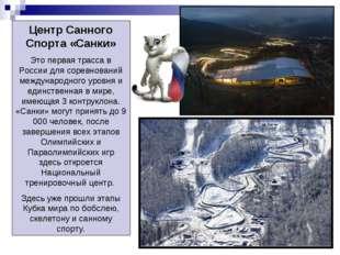 Центр Санного Спорта «Санки» Это первая трасса в России для соревнований межд
