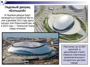 Ледовый дворец «Большой» В Ледовом дворце будут проводиться хоккейные матчи,