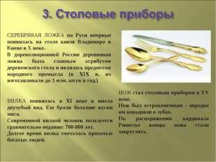 СЕРЕБРЯНАЯ ЛОЖКА на Руси впервые появилась на столе князя Владимира в Киеве в