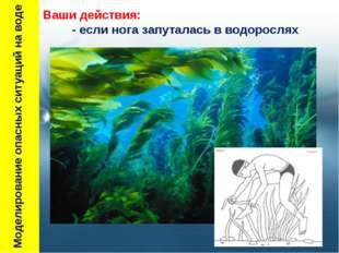 Моделирование опасных ситуаций на воде Ваши действия: - если нога запуталась