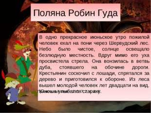 Поляна Робин Гуда В одно прекрасное июньское утро пожилой человек ехал на пон