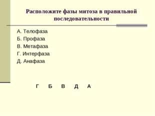 Расположите фазы митоза в правильной последовательности А. Телофаза Б. Профаз