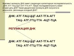 ДНК: АТГ-ТАЦ-ЦЦГ-ААТ-ТГА-АГТ ТАЦ- АТГ-ГГЦ-ТТА -АЦТ-ТЦА РЕПЛИКАЦИЯ ДНК ДНК: АТ