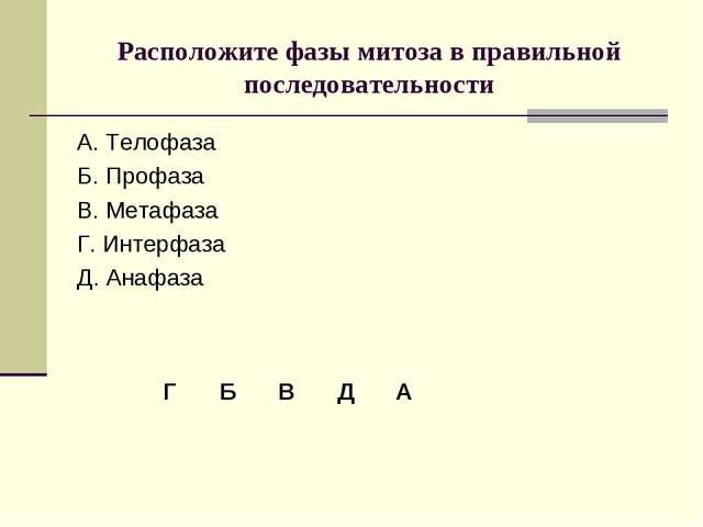 Расположите фазы митоза в правильной последовательности А. Телофаза Б. Профаз...