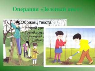 Операция «Зеленый лист»