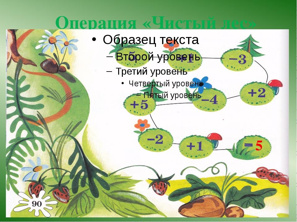 Операция «Чистый лес» 5 5