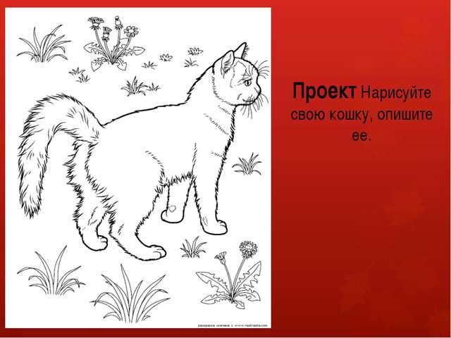 Проект Нарисуйте свою кошку, опишите ее.
