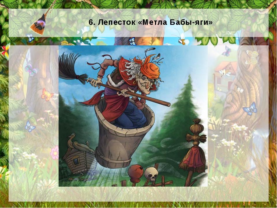 6. Лепесток «Метла Бабы-яги»