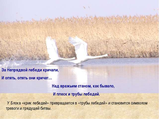 За Непрядвой лебеди кричали, И опять, опять они кричат… Над вражьим станом, к...