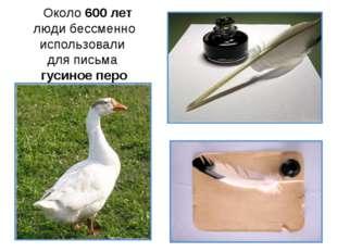Около 600 лет люди бессменно использовали для письма гусиное перо