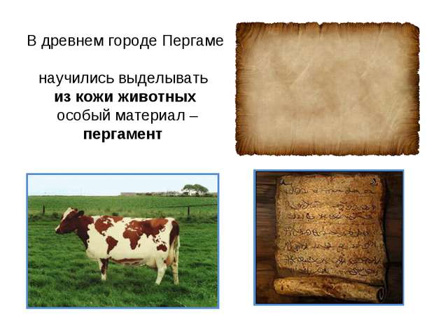 В древнем городе Пергаме научились выделывать из кожи животных особый материа...