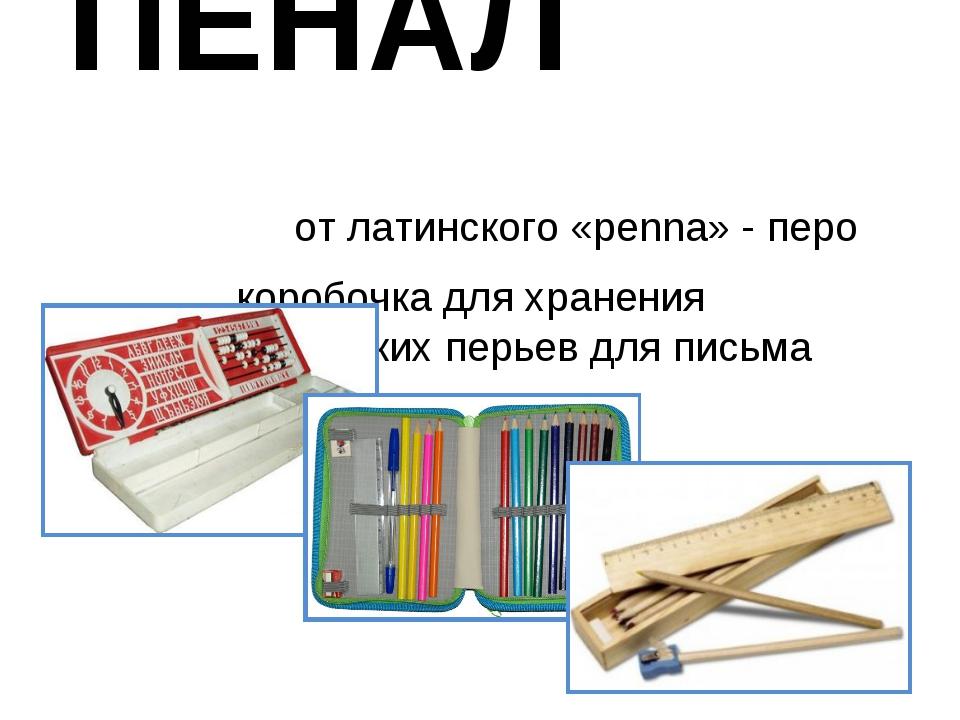ПЕНАЛ от латинского «penna» - перо коробочка для хранения металлических перье...