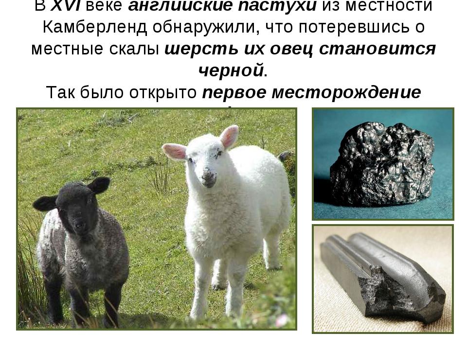 В XVI веке английские пастухи из местности Камберленд обнаружили, что потерев...