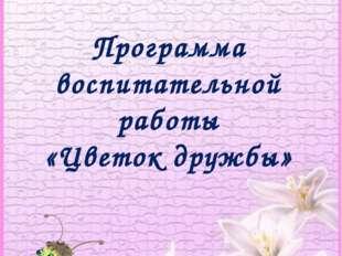 Программа воспитательной работы «Цветок дружбы»