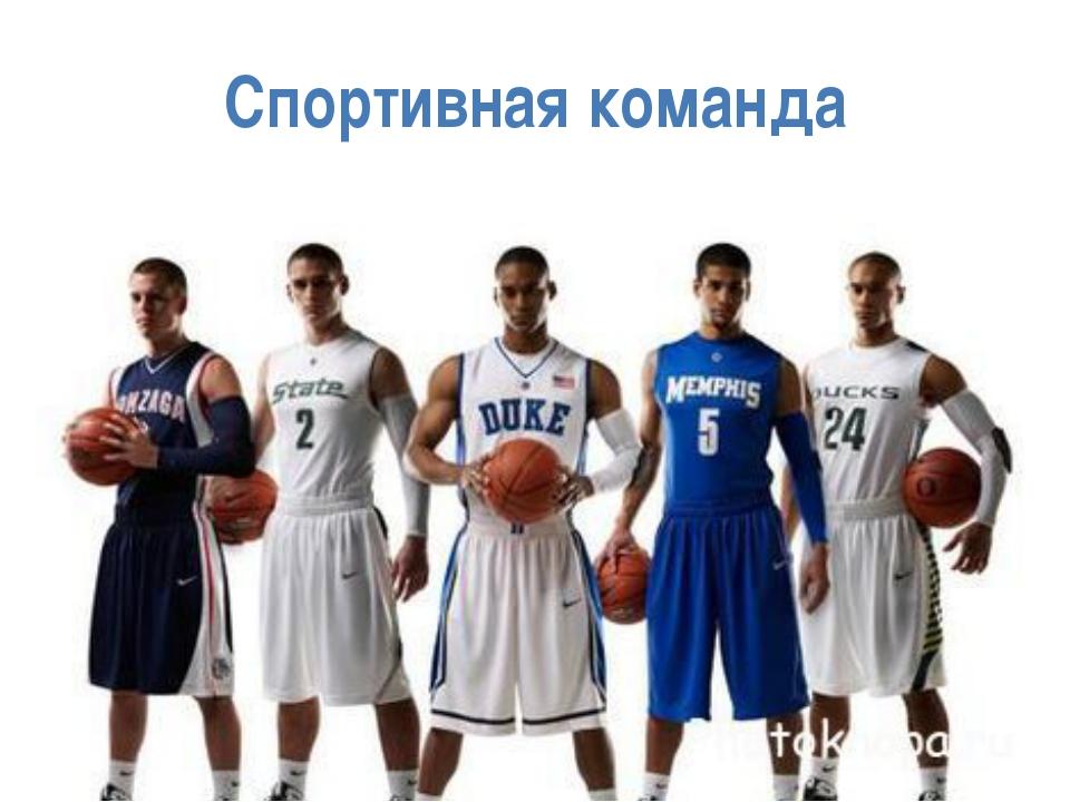Спортивная команда