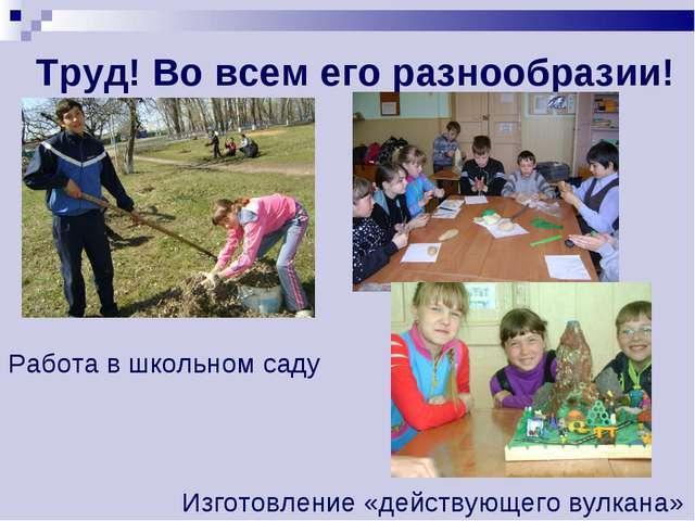 Труд! Во всем его разнообразии! Работа в школьном саду Изготовление «действую...