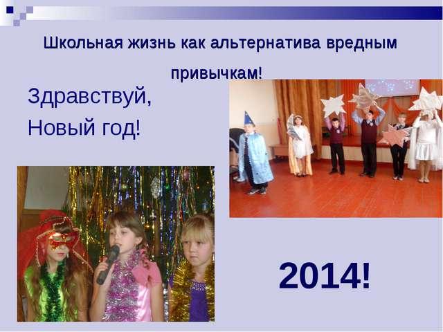 Школьная жизнь как альтернатива вредным привычкам! Здравствуй, Новый год! 2014!
