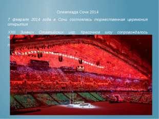 7 февраля 2014 года в Сочи состоялась торжественная церемония открытия XXII З