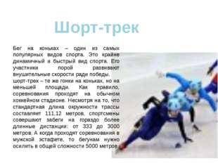 Шорт-трек Бег на коньках – один из самых популярных видов спорта. Это крайне