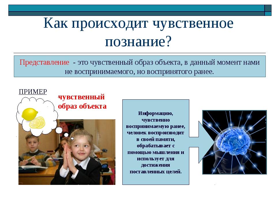 Как происходит чувственное познание? Представление - это чувственный образ об...