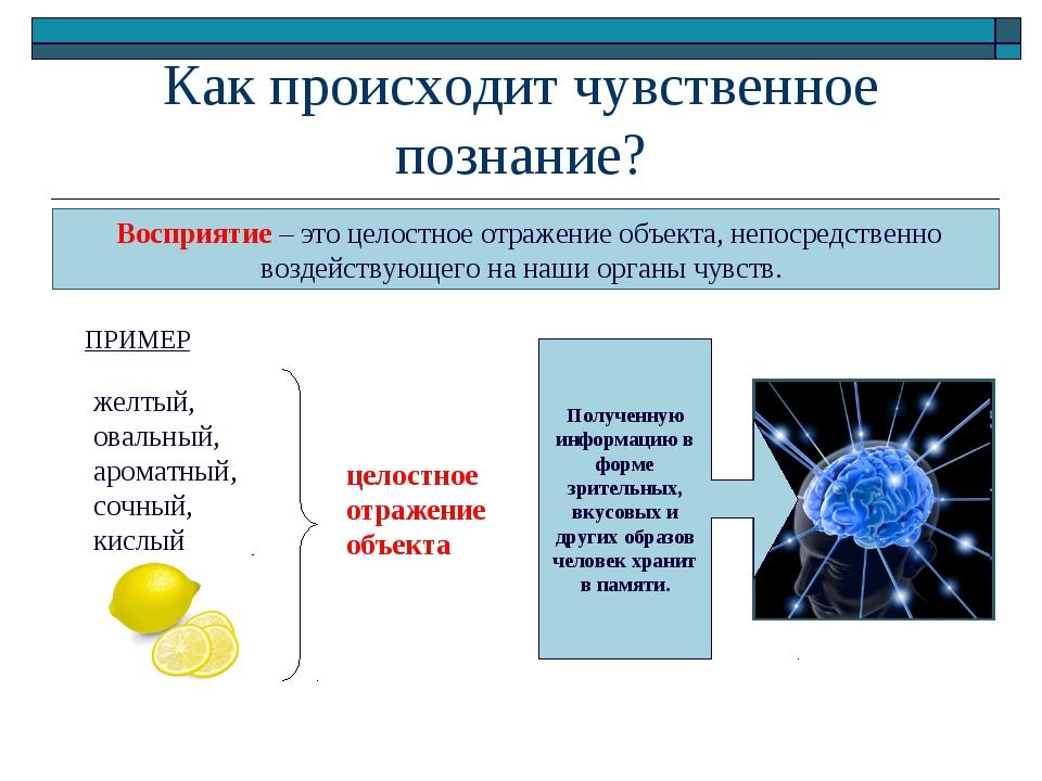 Как происходит чувственное познание? Восприятие – это целостное отражение объ...