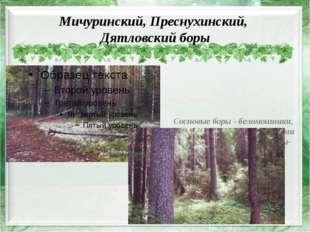 Мичуринский, Преснухинский, Дятловский боры Сосновые боры - беломошники, пред