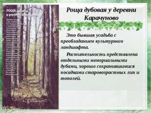 Роща дубовая у деревни Карачуново Это бывшая усадьба с преобладанием культур