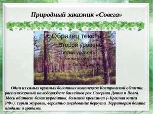 Природный заказник «Совега» Один из самых крупных болотных комплексов Костром