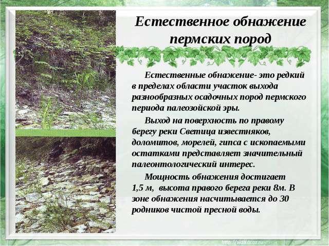 Естественное обнажение пермских пород Естественные обнажение- это редкий в п...
