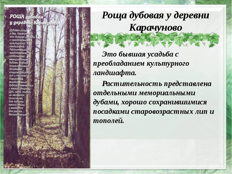Роща дубовая у деревни Карачуново Это бывшая усадьба с преобладанием культур...