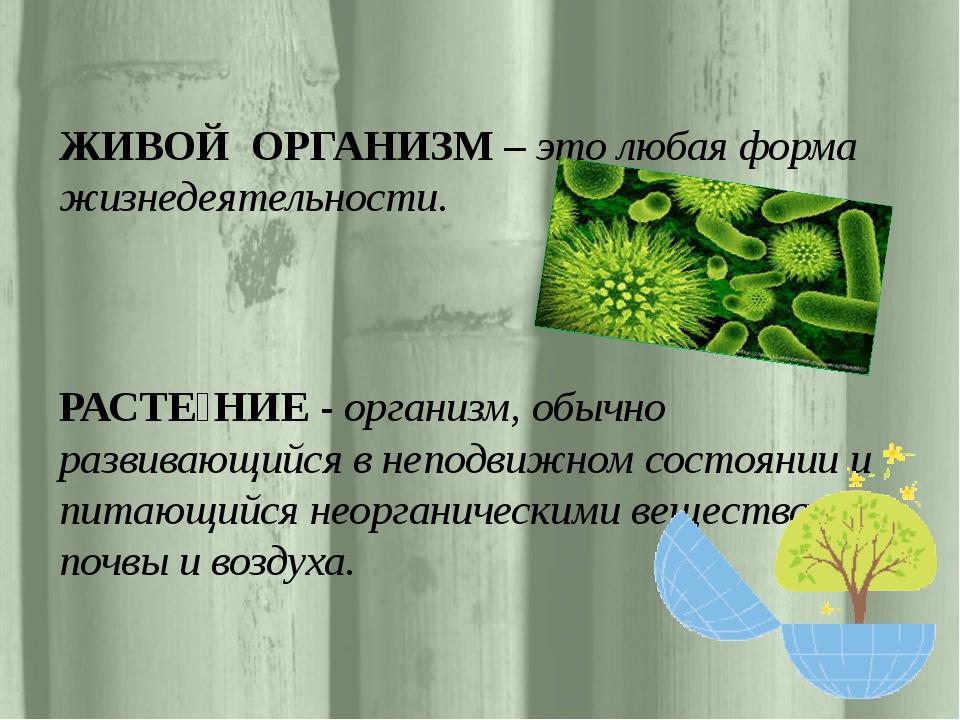 ЖИВОЙ ОРГАНИЗМ– это любая форма жизнедеятельности. РАСТЕ́НИЕ - организм, об...