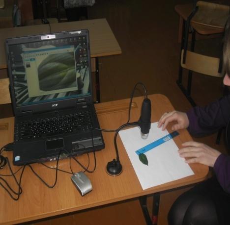 J:\исследовательская работа 3 класс\фото\SAM_0920.JPG