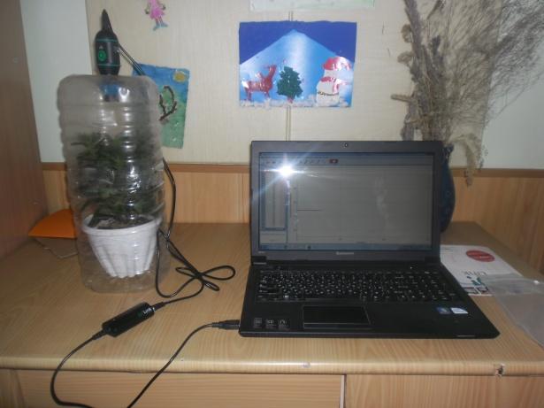 J:\исследовательская работа 3 класс\фото\SAM_0938.JPG