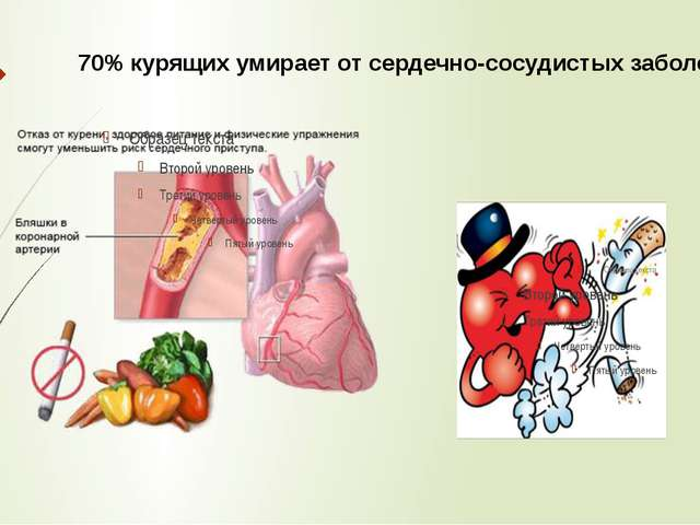 70% курящих умирает от сердечно-сосудистых заболеваний.